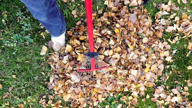 Rive blade væk fra græsplænen