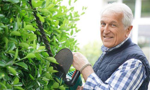 Senior mand smiler og klipper hæk