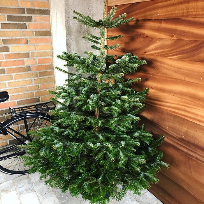 Juletræ der står i læ i carport