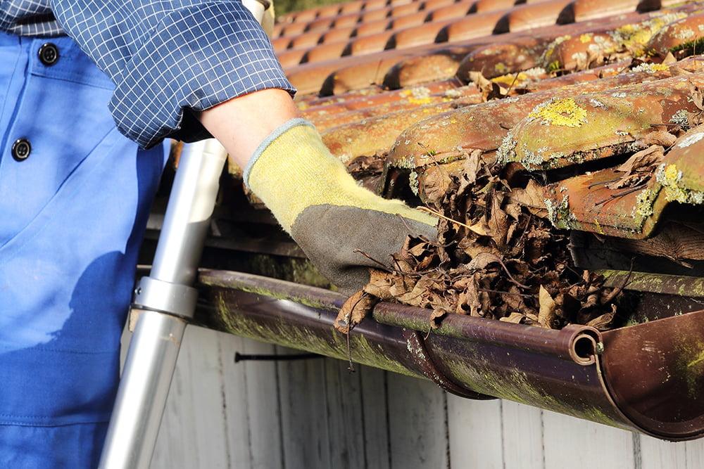 mand renser tagrende for blade og skidt